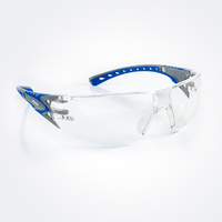 Stream™ Evo Safety Glasses - Clear Lens
